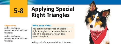 Right Triangle Dog